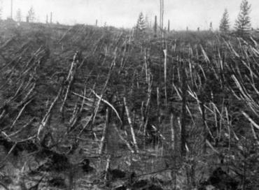 """Метеор што уништи милиони дрвја во Сибир само ја """"допре"""" Земјата, се вели во новите истражувања"""